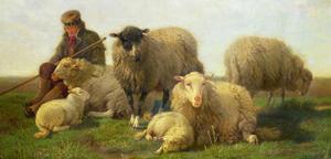 Олеся Емельянова. Овцы. Басня про сильных и слабых.