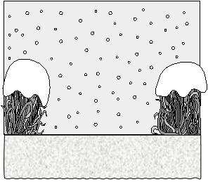 Дюймовочка. Вид сцены со снегопадом.