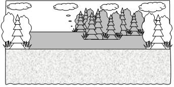 Гуси-лебеди. Вид сцены в лесу.